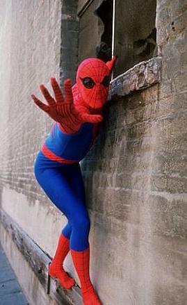 Spider Man - o Homem Aranha